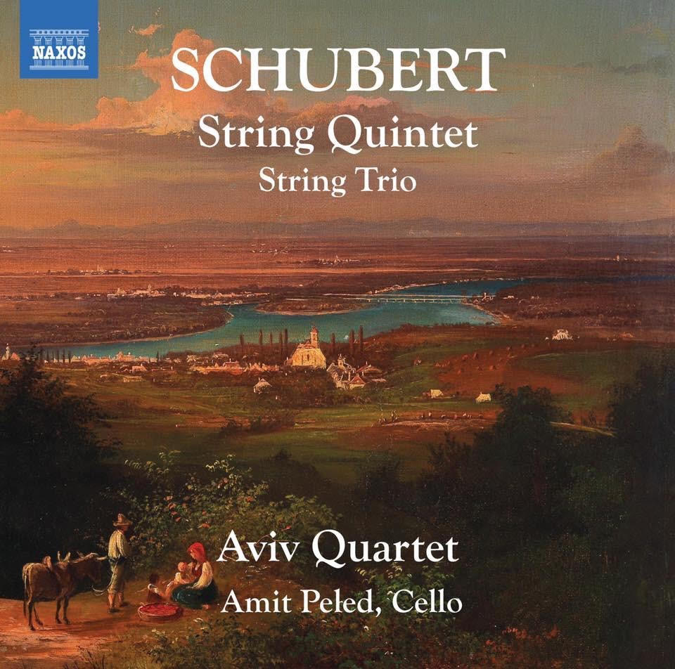 Aviv schubert string quartet and trio